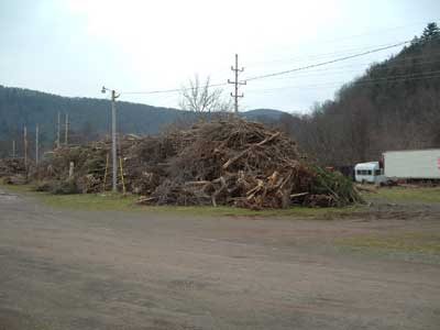 Walton, NY - flood cleanup 2006