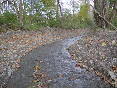 Bob's Brook - After